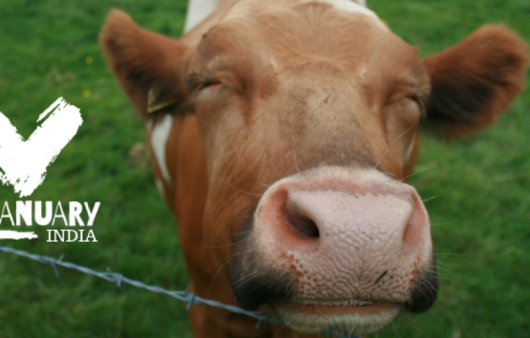 Veganuary and Earthr.org partner for a Massive Campaign in India, and you should be Excited!